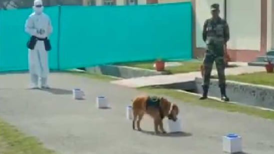 The Indian Army used three dogs, namely Jaya and Mani of indigenous Chippaparai breed, and a Cocker Spaniel called Casper, for the demonstration.(ANI)