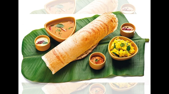 The love for a crisp dosa is not only driven by taste but also the texture it offers