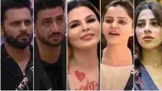 Rubina Dilaik, Aly Goni, Rahul Vaidya, Rakhi Sawant or Nikki Tamboli, who do you think should win Bigg Boss 14?