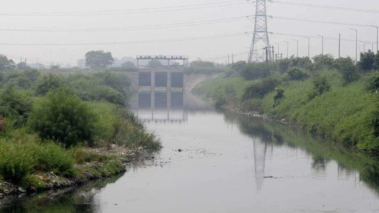 River activists have warned that the project could push Delhi to water scarcity, depletion of groundwater levels and major flooding and loss in case of a disaster.(Sunil Ghosh/Hindustan Times)