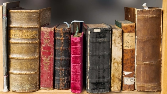 The first wonder written in the genre, this book brings together various YouTubers and their journeys on paper. (Representational Image) (Pixabay)