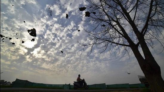 The previous high for February 23 (29.5°C) was recorded in 1973 while for February 24 (29.4°C), it was in 2001. For February 25, the previous high was in 2006 when 29.5°C was recorded. (Gurpreet Singh/HT)