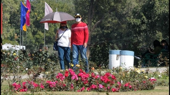 The high temperature was no deterrent for this couple visiting Rose Garden on the inaugural day of Rose Festival in Chandigarh on Friday. (Ravi Kumar/HT)