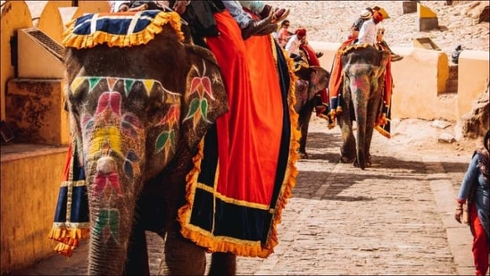 Covid test mandatory for travellers coming to Rajasthan from Maharashtra, Kerala(Photo by Jeet Dhanoa on Unsplash)