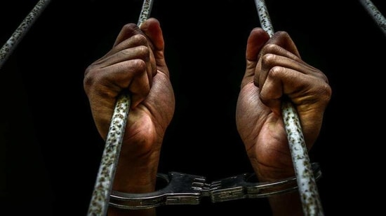 On Monday, the Supreme Court acknowledged the efficacy of Mishra's software, seeking his assistance in ensuring that life convicts could exercise their legal right of early release after serving 14 years in jail.(Representative image)