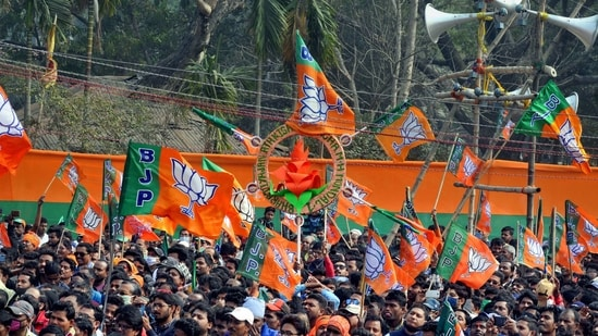 BJP flags seen at a rally. (HT Archive/For Representative Purposes)