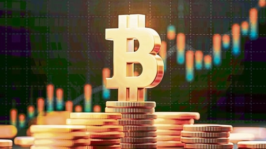 While its price has risen significantly over the past year, bitcoin remains highly volatile. The virtual currency smashed through $58,000 on Feb. 21 then fell back by as much as 25%.(MINT File photo )