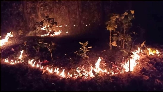 The fire in Similipal biosphere came as Odisha topped the list of forest fire incidents with 6627 fire spots since February 24 as per the Forest Survey of India's fire alerts system. (HT PHOTO).