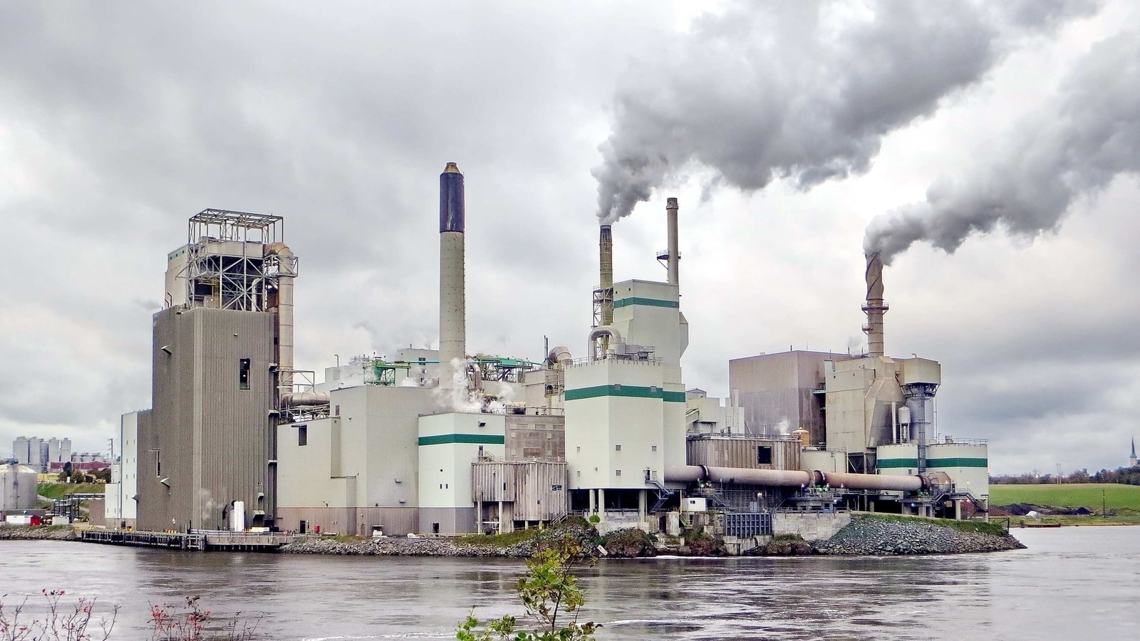Scientists warn of rebound after record 7% fall in global emissions