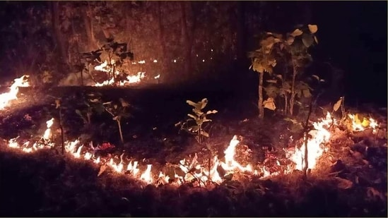 The fire in Similipal biosphere reserve came at a time when Odisha topped the list of forest fire incidents with 8688 fire spots since February 25 as per the Forest Survey of India's fire alerts system. (ANI PHOTO).