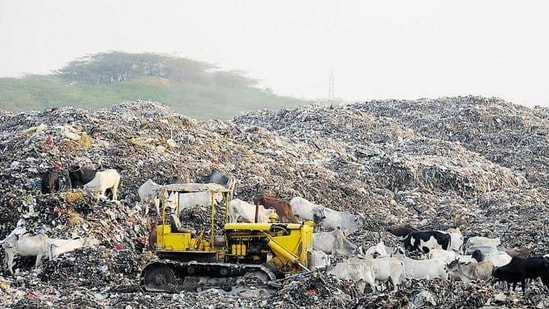 The official, on condition of anonymity, added that municipalities need four pits at Asola Bhatti, which are around 30 metres deep, to dump their waste.(HTFile)