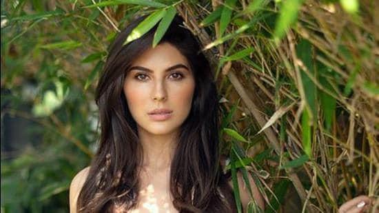 Elnaaz Norouzi will be next seen in Sangeen.