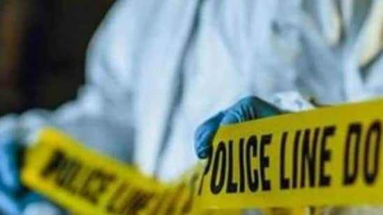 Police have recovered murder weapons including a knife and an axe.(Representational )