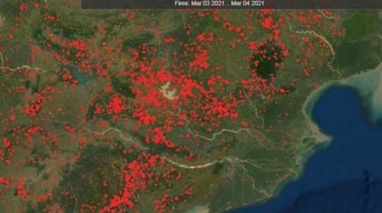 Satellite image of NASA's Fire Information for Resource Management System of forest fires.(Courtesy- NASA)