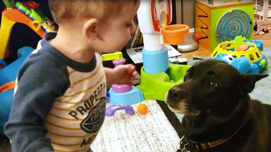 The image shows a kid with his furry buddy.(Screengrab)
