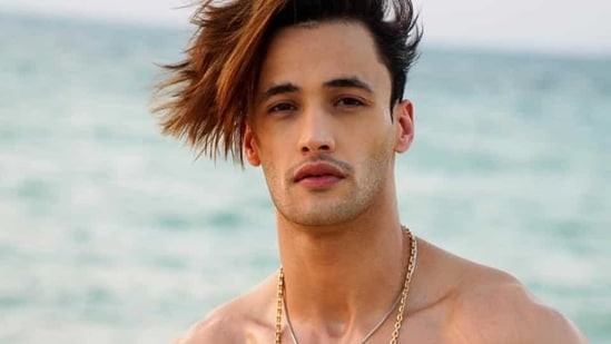 Asim Riaz was the runner-up of Bigg Boss 13.