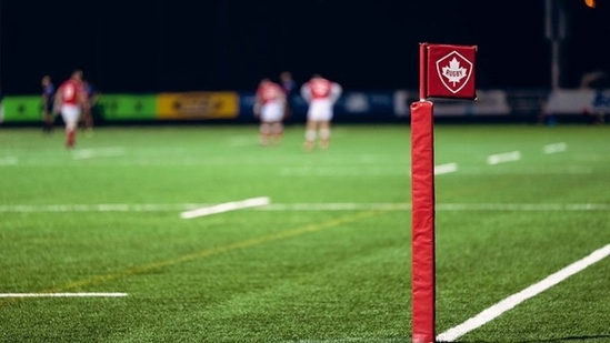 South Africa declares intention to host Lions rugby tour(Twitter)