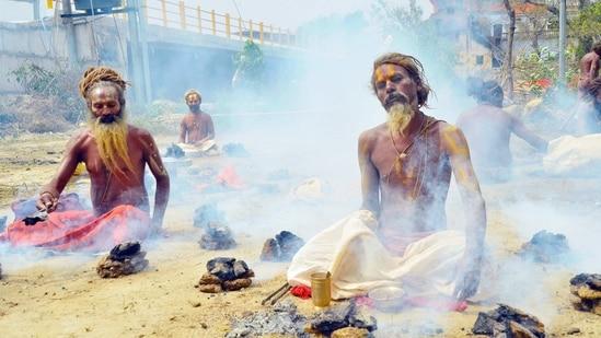 Sadhus or 'holy men' offer prayers during a Kumbh Mela in Haridwar on Tuesday. (ANI)