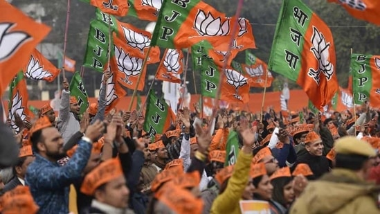 Bharatiya Janta Party (BJP) supporters wave party flags during a pro-CAA rally. (HT Archive)
