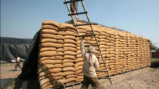 A worker carries a ladder past sacks filled with wheat at a Food Corporation of India (FCI) warehouse in Morinda in Punjab. (REUTERS)
