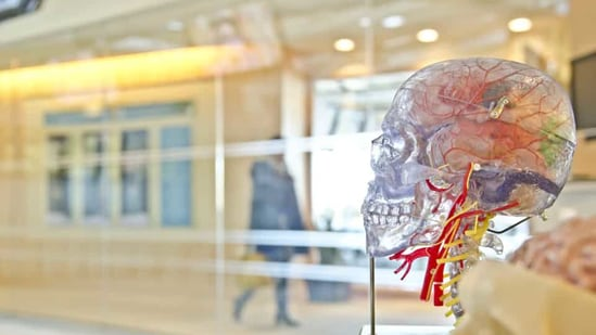 Officials have also linked five deaths with the unknown brain disease.(Unsplash)