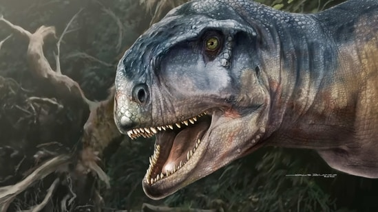 An artist's impression of the Cretaceous Period meat-eating dinosaur Llukalkan aliocranianus that lived about 80 million years ago in the Patagonia region of Argentina.(via REUTERS)