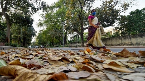 Even as parts of the country experience a heat wave, the India Meteorological Department has warned that maximum temperatures in most parts of India will be above normal between April and June. (PTI Photo/Manvender Vashist)