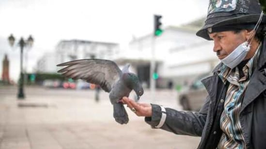 Belhussein Abdelsalam, 58, a Charlie Chaplin impersonator feeds pigeons as he waits for customers in one of the main avenues in Rabat, Morocco, Wednesday, Dec. 16, 2020. When 58-year-old Moroccan Belhussein Abdelsalam was arrested and lost his job three decades ago, he saw Charlie Chaplin on television and in that moment decided upon a new career: impersonating the British actor and silent movie maker remembered for his Little Tramp character. (AP)