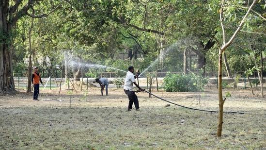 Preparation work underway at Delhi Zoo ahead of its reopening, in New Delhi.(Arvind Yadav/HT PHOTO)