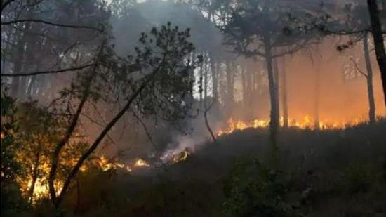 As many as 845 incidents of forest fire have been reported in Himachal Pradesh so far in April. (HT file photo)