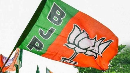 Hooghly: BJP worker Piru Adak's mother was allegedly killed by TMC workers in Goghat, when she tried to defend her son from an attempted assault. (Representational Image)