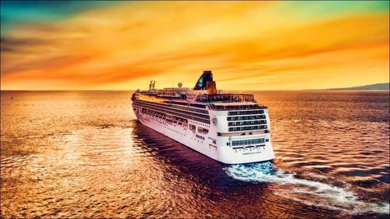 Norwegian Cruises seeks permission to allow trips from US in July(Photo by Alonso Reyes on Unsplash)