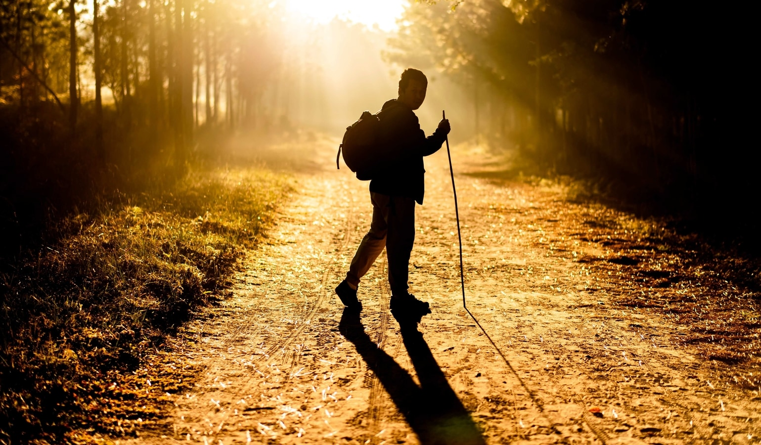Study shows the benefits of exercise for people with peripheral artery disease