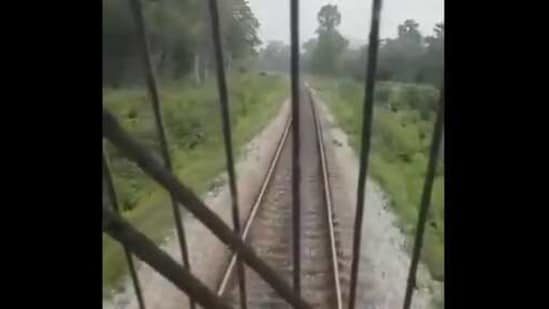 The image is taken from the video which shows the loco pilot halting the train.(Twitter/@drm_apdj)