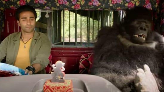 Hello Charlie review: Toto, the gorilla, is the hero of this Aadar Jain  film | Hindustan Times