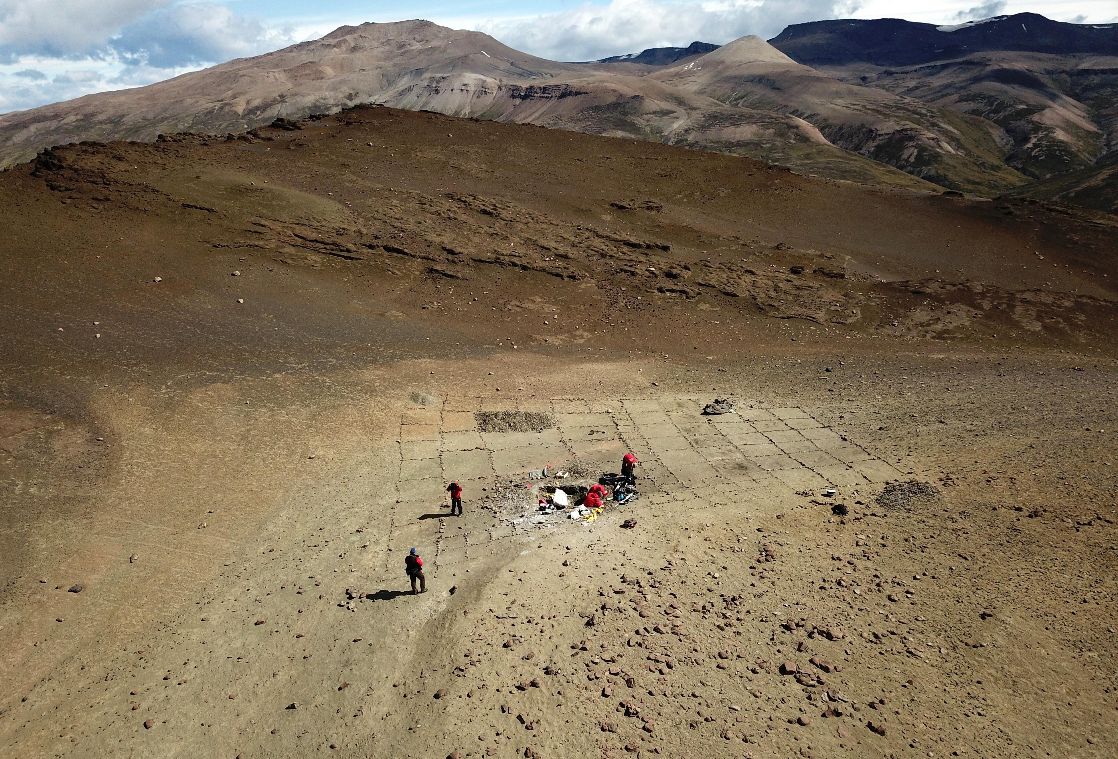 Paleontólogos que trabajan en el Valle de Los Sinas.  (A través de REUTERS)
