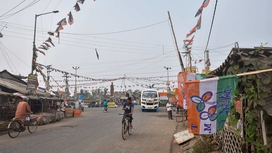 Tengua market area decorated with TMC flag at Nandigram in East Medinipur district. (PTI Photo)