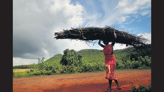 All the work and no glory: Women in rural India. (NurPhoto via Getty Images)