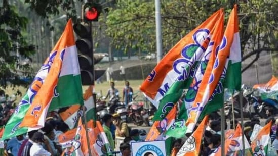 Supporters of Trinamool Congress (TMC) with party flags (File Photo)