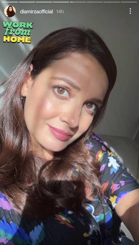 Dia Mirza shared a sunkissed selfie on Instagram Stories.