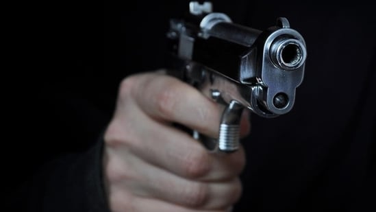 The murdered woman's domestic help was also shot while trying to save the woman, but he is likely to survive, said RP Meena, deputy commissioner of police (south-east).(Representational image)
