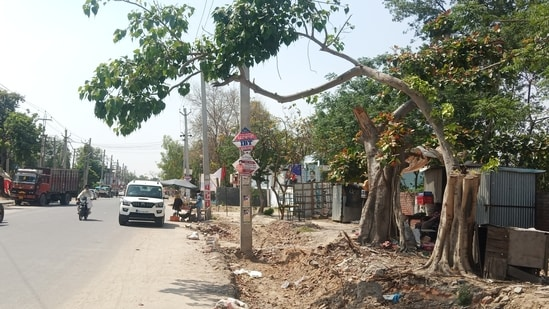 The fine was imposed on Chhote Lal Bhilala, 30, a resident of Silwani village of Raisen district, who was spotted cutting two sagaon (or sagwan; teak) trees at Singori Sanctuary on January 5.