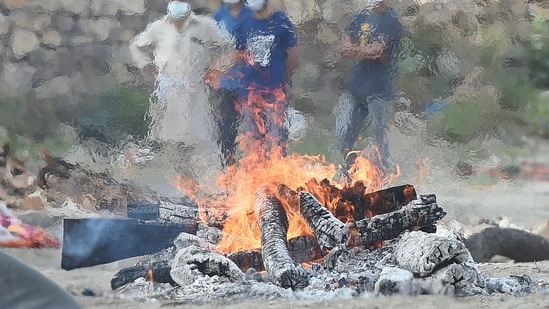 While Damodardas was being cremated, the youngest of his three daughters, Chandra, suddenly leaped into the flaming pyre, the police said, adding that the people present at the site immediately rushed in to pull her out of the fire. (File Photo)