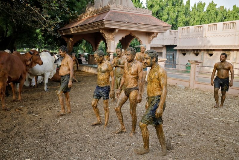 """People walk after applying cow dung on their bodies during """"cow dung therapy"""", believing it will boost their immunity to defend against the coronavirus disease (Covid-19) at the Shree Swaminarayan Gurukul Vishwavidya Pratishthanam Gaushala or cow shelter on the outskirts of Ahmedabad, India, May 9, 2021."""