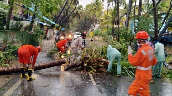 NDRF personnel clears the road after a tree fell on a road due to cyclone Tauktae, in Diu.
