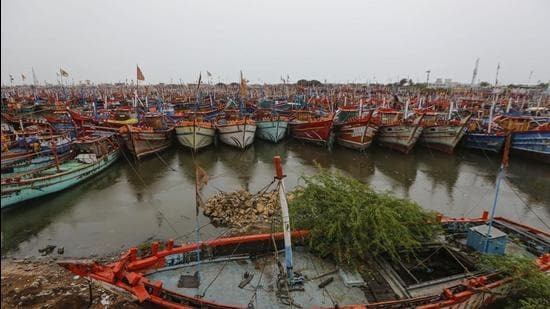 Fishing boats parked at a harbour near coastline of Veraval, Gir Somnath, on Monday, May 17. (PTI)