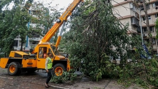 A crane lifts a fallen tree after strong winds caused by Cyclone Tauktae, in Mumbai on May 18, 2021. (Reuters)
