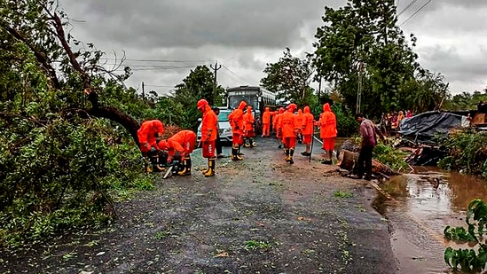 NDRF personnel clear a road, obstructed by felling of trees, after Cyclone Tauktae made landfall, in Gujarat.(PTI)