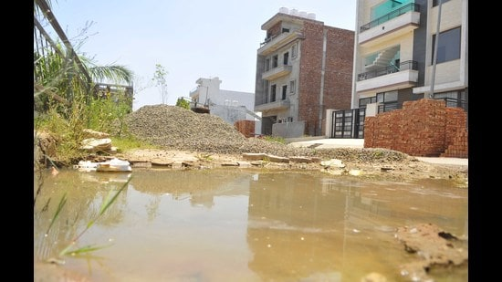 Water accumulated outside houses in Block H of Aerocity in Mohali on Wednesday. (Keshav Singh/HT)