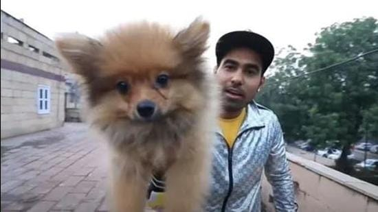 Gaurav Sharma acknowledged that he was influenced by the foreign videos of dogs being tied to helium balloons. Courtesy- YouTube